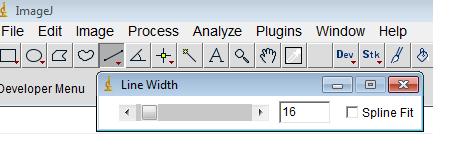 line_width.png
