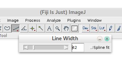 line_width2.png